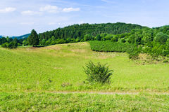 Landscape of low Eifel mountains Stock Photography