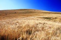 Landscape of Macedonia Royalty Free Stock Image