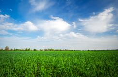 Landscape made in the daytime. Beautiful cloudy sky. Royalty Free Stock Image