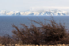 Landscape of the Magadan region. Mountain landscape the Sea of Okhotsk, Magadan, Russia Stock Image