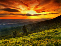 Landscape, Magic colours, Sunrise, Mountain meadow royalty free stock image