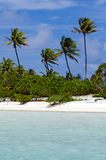 Landscape of of Maina Island in Aitutaki Lagoon Cook Islands Royalty Free Stock Image