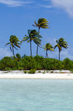 Landscape of of Maina Island in Aitutaki Lagoon Cook Islands Stock Image