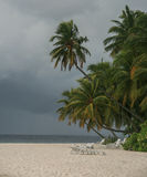 The landscape in Maldives Royalty Free Stock Photography