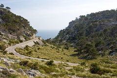 Landscape from Mallorca Royalty Free Stock Image