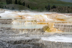 Mammoth Hot Springs in Yellowstone Stock Image