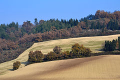 Landscape in the Marche Stock Image