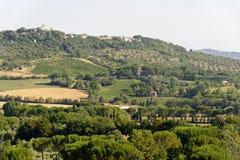 Landscape in Maremma (Tuscany) Stock Image