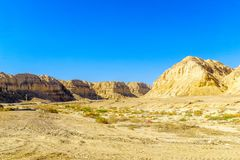 Landscape and Marlstone rock formation. Near Neot HaKikar, northern Arava valley, south of the Dead Sea, Southern Israel Royalty Free Stock Images