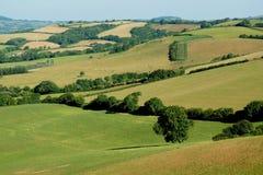Landscape. In Marshwood Vale, Devon Stock Images
