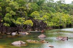Landscape of Masoala National Park, Madagascar Royalty Free Stock Photos