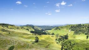 Landscape Matamata Stock Image