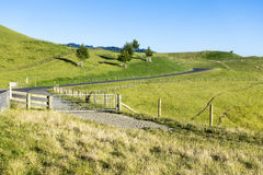Landscape Matamata Royalty Free Stock Image