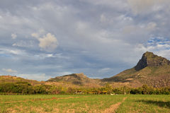 Landscape of Mauritius Stock Photography