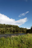 Landscape, meadow, the blue sky and river. Landscape - meadow, the blue sky and river Stock Image