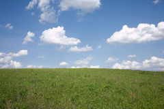 Landscape with meadow and sky Stock Images