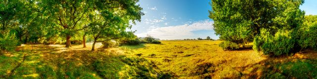 Landscape with meadow and trees in Germany. A landscape with a meadow and trees in Germany Stock Photos