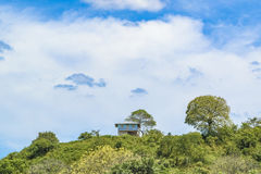 Landscape Meadow Tropical Scene, Ecuador. Landscape meadow tropical scene at outdoors in Guayas district, Ecuador Royalty Free Stock Photos