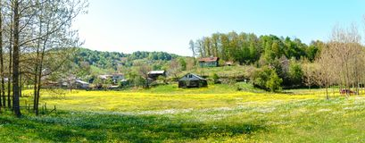 Landscape Meadow View of Village with Houses Stock Photography