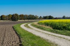Hiking path along the meadows of Scheuring, Romantische Strasse, Germany stock photo