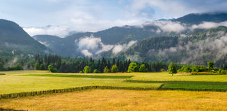 Landscape with meadows and mountains in the fog Royalty Free Stock Photography
