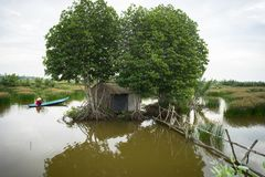 Landscape of Mekong delta with mangrove tree, floating house and rowing boat in Ca Mau province, Mekong delta, south of Vietnam.  royalty free stock image