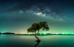 Landscape with Milky way galaxy. Night sky with stars. And silhouette mangrove tree in sea. Long exposure photograph Stock Photos