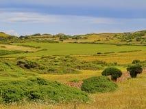 Landscape of Minorca Royalty Free Stock Image