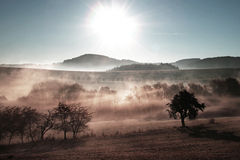 Landscape in mist. Scenic view over misty landscape Royalty Free Stock Image