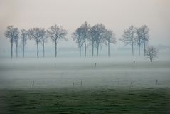 Landscape in the mist Royalty Free Stock Image