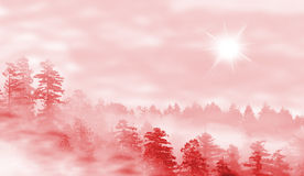 Landscape of misty forest at sunrise. Concept of mystery - red Stock Photos