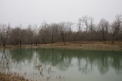 Landscape with misty morning fog in the Forest Lake or Beautiful forest lake in the morning at winter time. Azerbaijan nature. Caucasus Royalty Free Stock Images