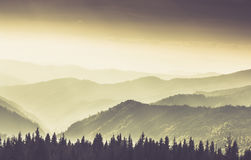 Landscape of misty mountain in forests hills. Stock Photo