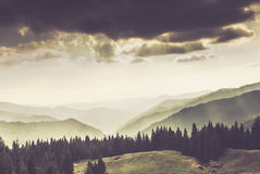 Landscape of misty mountain in forests hills. Royalty Free Stock Images