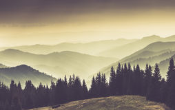Landscape of misty mountain in forests hills. Stock Images