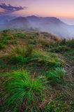 Landscape of misty mountain at sunrise Royalty Free Stock Images