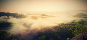 Landscape misty panorama. Fantastic dreamy sunrise above fairy  misty valley Royalty Free Stock Photos
