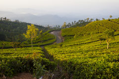 Landscape misty panorama in Sri Lanka Royalty Free Stock Photos