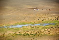 Landscape in Mongolia. Landscape in the Gobi desert in Mongolia Stock Photos