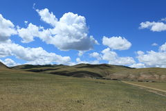 Landscape in Mongolia Stock Images