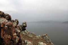 landscape mongolianen Fotografering för Bildbyråer