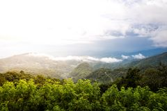 Landscape of montain with nature forest stock image