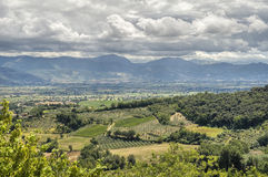 Landscape of Montefalco. Umbria. Stock Photos