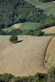 Landscape in Montefeltro near Urbania Marches, Italy Stock Photo