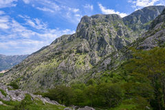 Landscape of Montenegro. The slopes of the low mountains near the Kotor city Royalty Free Stock Photography