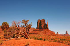 Landscape of Monument Valley Navajo Nation Stock Image