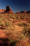 Landscape of Monument Valley Royalty Free Stock Images