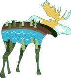 Landscape Moose Royalty Free Stock Photos