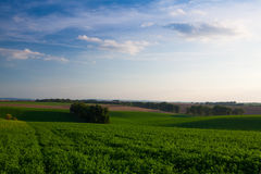 Landscape in Moravia at sunset Royalty Free Stock Photography