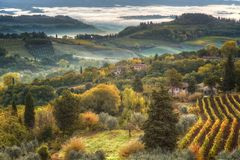 Landscape with a morning fog stock photography